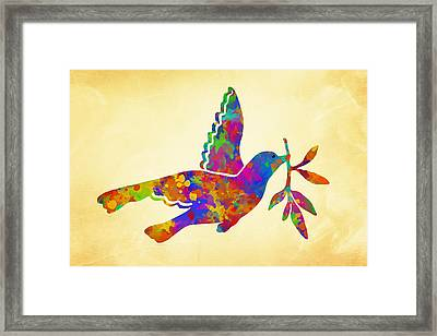 Dove With Olive Branch Framed Print by Christina Rollo