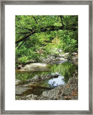 Down By The Creek Framed Print by Donna Blackhall