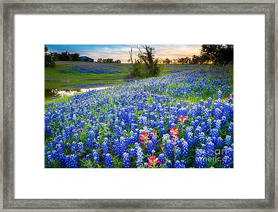 Down By The Pond Framed Print by Inge Johnsson