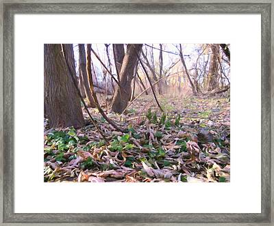 Down Here - Digital Painting Effect Framed Print by Rhonda Barrett