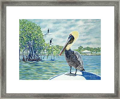 Down In The Keys Framed Print by Danielle  Perry