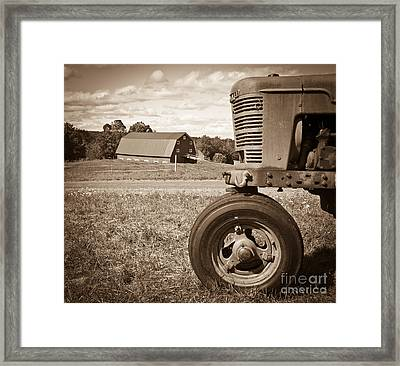 Down On The Farm Framed Print by Edward Fielding