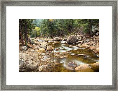 Down Stream Framed Print by James BO  Insogna