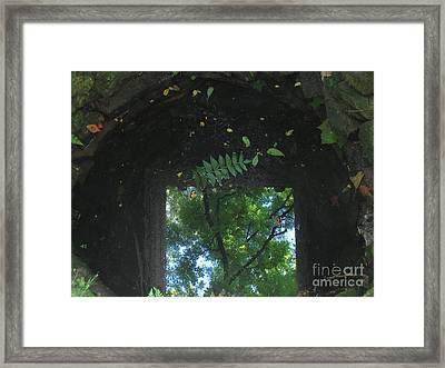 Down The Well Framed Print by Fred  Sheridan