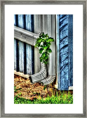 Downspout Framed Print by Doc Braham