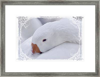 Downy Soft Mother Goose Framed Print by Elaine Manley