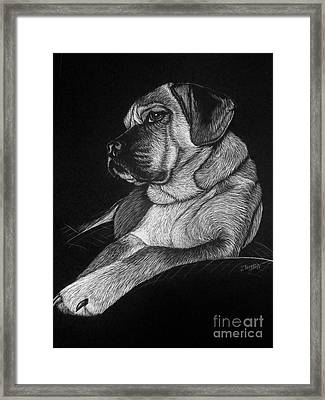 Dozer Framed Print by Jennifer Jeffris