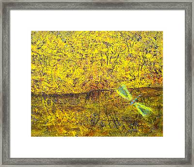 Dragonfly Above Water Framed Print by David  Seacord