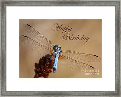 Dragonfly Birthday Card Framed Print by Carol Groenen