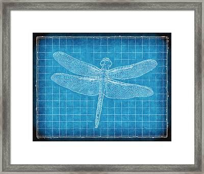 Dragonfly Blueprint Framed Print by Robert Jensen