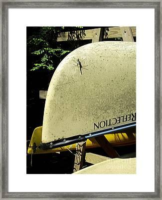 Dragonfly Resting Framed Print by Avis  Noelle