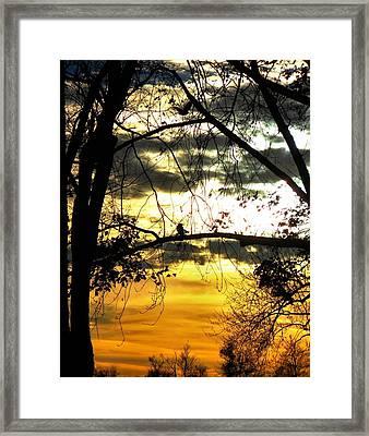 Dream At Dusk Framed Print by Gothicolors Donna Snyder