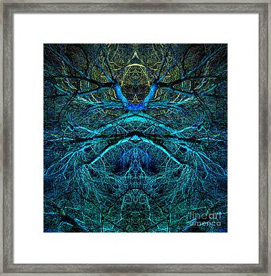 Dream Catcher Framed Print by Tim Gainey