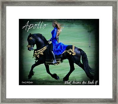 Dream Maker Framed Print by Royal Grove Fine Art