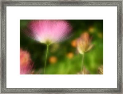 Dream Seeker Framed Print by Michael Eingle