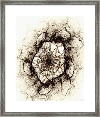 Dreamcatcher Framed Print by Anastasiya Malakhova
