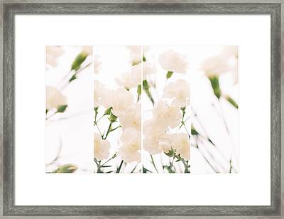 Dreaming Of Carnations - Natalie Kinnear Photography Framed Print by Natalie Kinnear