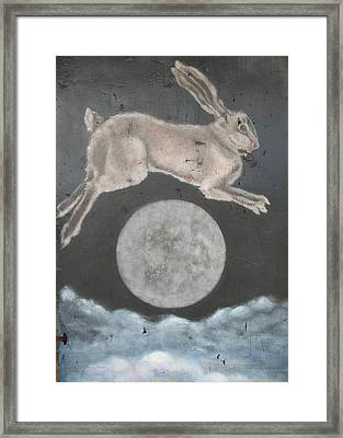 Dreaming Of Rabbits Framed Print by Donna Ellery