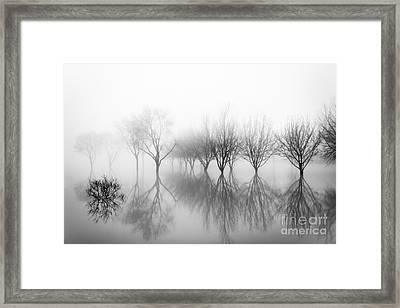 Dreamland01 Framed Print by Stefano Bertolucci