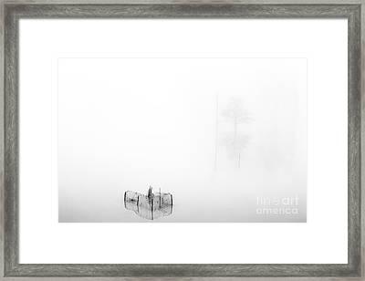 Dreamland07 Framed Print by Stefano Bertolucci