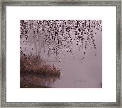 Dreams Of The Heart Framed Print by Jeanette C Landstrom