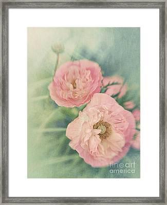 Pastel  Framed Print by Priska Wettstein