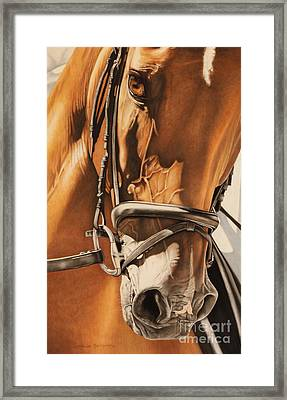 Dressage And Details Framed Print by Joni Beinborn