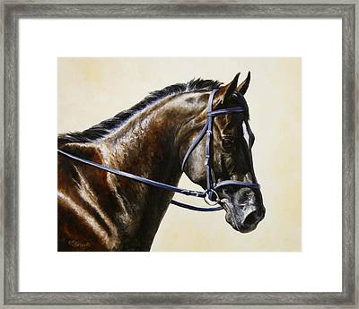Dressage Horse - Concentration Framed Print by Crista Forest