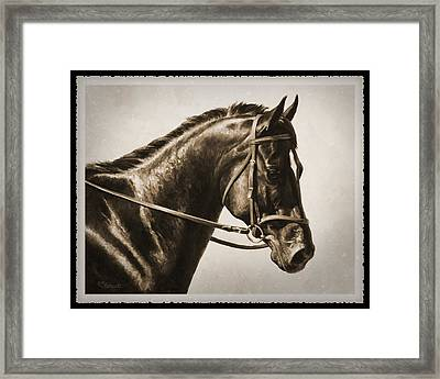 Dressage Horse Old Photo Fx Framed Print by Crista Forest