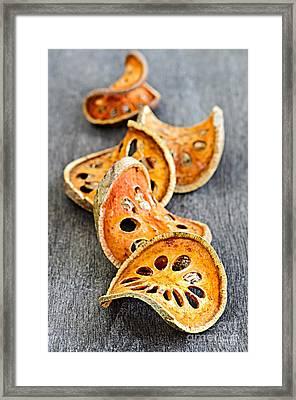 Dried Bael Fruit Framed Print by Elena Elisseeva