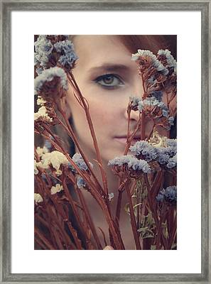 Dried Flowers Framed Print by Wojciech Zwolinski