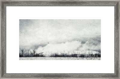 Drifting Framed Print by Priska Wettstein