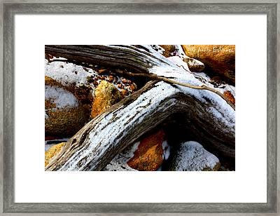 Driftwood  Framed Print by Anne Babineau