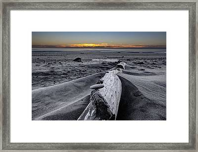 Driftwood In The Sand Framed Print by Debra and Dave Vanderlaan