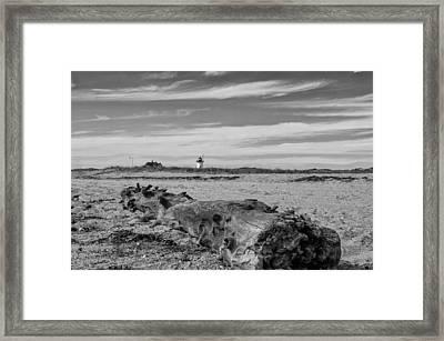 Driftwood Log Framed Print by Brian Caldwell