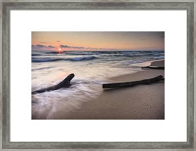 Driftwood On The Beach Framed Print by Adam Romanowicz