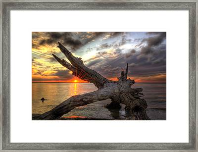 Driftwood Sunset Framed Print by Greg and Chrystal Mimbs