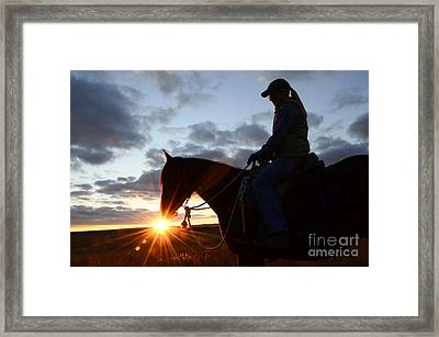 Drinking In The Light Framed Print by Bob Christopher