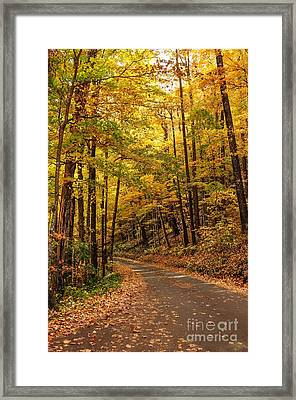 Driving Fall Mountain Roads. Framed Print by Debbie Green