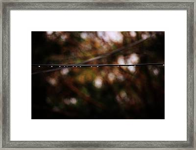 Drops Framed Print by Jessica Shelton