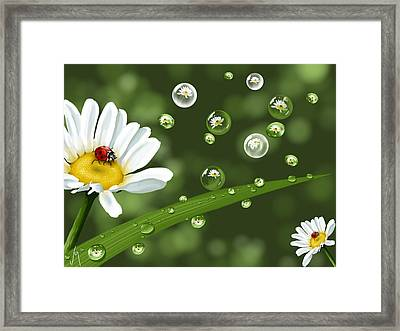 Drops Of Spring Framed Print by Veronica Minozzi