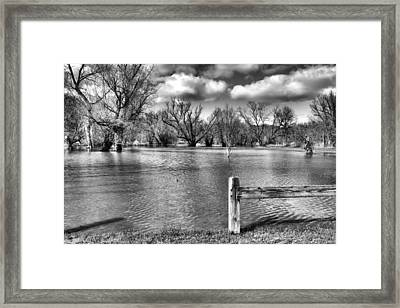 Drowned Park Framed Print by Tim Buisman