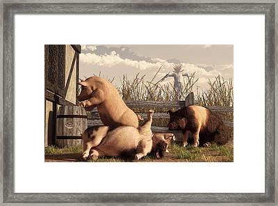 Drunken Pigs Framed Print by Daniel Eskridge