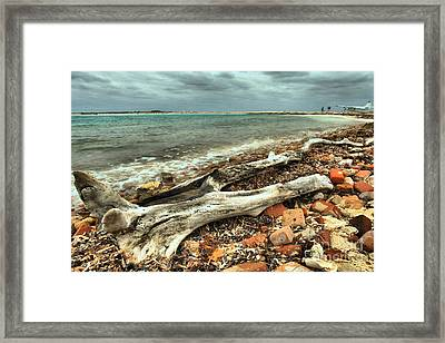 Dry Tortugas Driftwood Framed Print by Adam Jewell