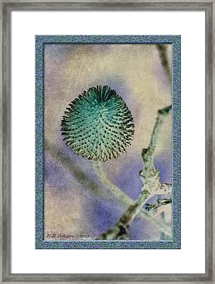 Dryweed Framed Print by WB Johnston