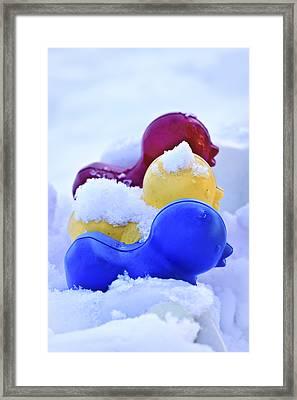 Ducks In A Row Framed Print by Christi Kraft