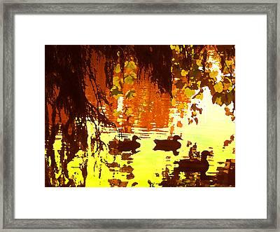 Ducks On Red Lake Framed Print by Amy Vangsgard