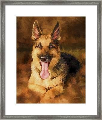 Duke Framed Print by David Wagner