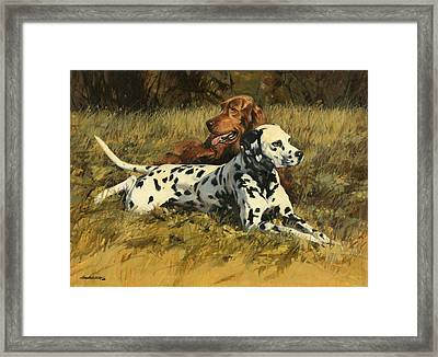 Duke N Dooley Framed Print by Don  Langeneckert