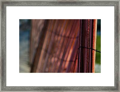 Dune Fence Framed Print by Laura Fasulo